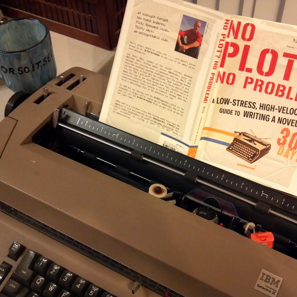 Robbz Selectric and NanoWriMo book-square image