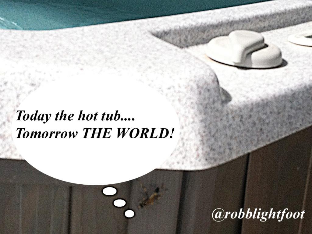 Bug warefare - hot tub and wasp